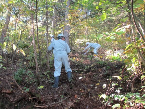森林(もり)の里親促進事業を実施しました。