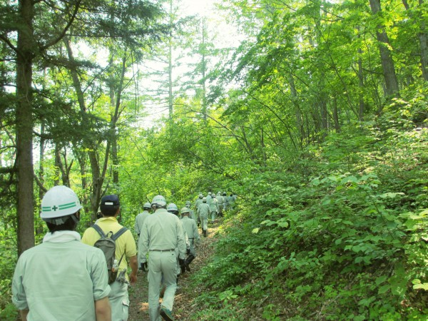 森林(もり)の里親促進事業を行いました。
